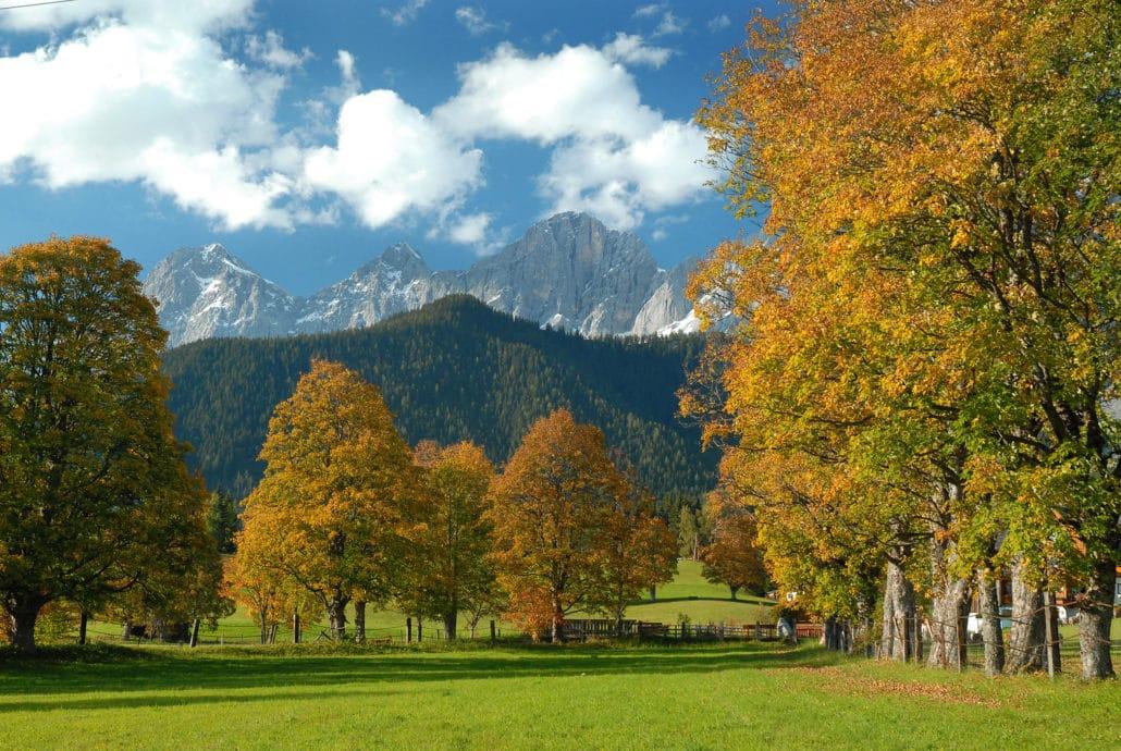 Golfpauschale Angebote und Pauschalen Ramsau - bergfex